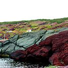 Red Rock Green Rock by Leslie van de Ligt