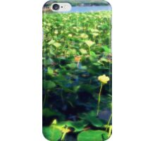 Lotus Blossoms in Bloom iPhone Case/Skin