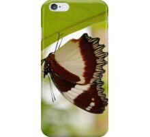 drying out, madagascar iPhone Case/Skin