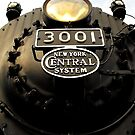 New York Central 3001 4-8-2  #1..Cause I got the fever that's for sure..Lord I know it's the chance that I take..There's a life out there and it's gonna be mine (photo) by jammingene