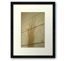 Shadow's Shadow © Vicki Ferrari Framed Print