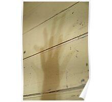 Shadow's Shadow © Vicki Ferrari Poster