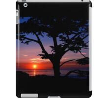 #243    Sunset From Scenic iPad Case/Skin