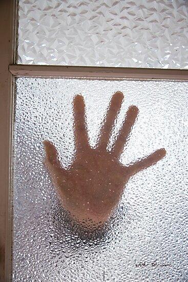 Warm Welcome © Vicki Ferrari by Vicki Ferrari