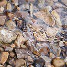 River rocks, spring stones by elasita