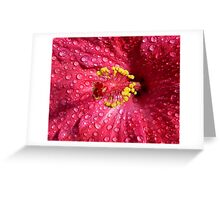 Pink, Yellow And Red Greeting Card
