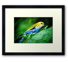 Pretty as a Painting.... Framed Print