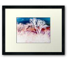 wild trees Framed Print
