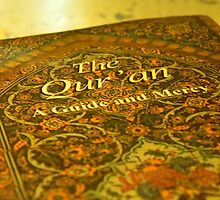 The Qur'an by Leyla Hur
