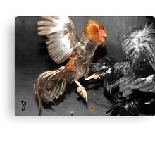 Pinoy Fighting Cock Canvas Print