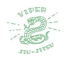 Viper Jiujitsu Photographic Print