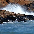 Waves on the Rocks!!!!!! by flyprincess