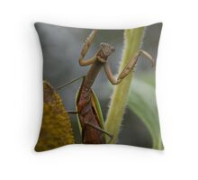 Kung fu Mantid Throw Pillow