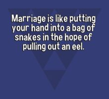 Marriage is like putting your hand into a bag of snakes in the hope of pulling out an eel.   by margdbrown