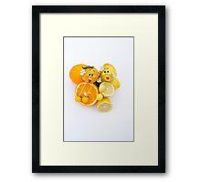 Oscar Orange Lucy Lemon  Framed Print