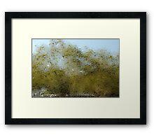 blurry tree Framed Print