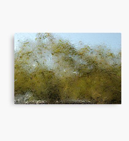 blurry tree Canvas Print