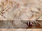 Distraction 1 © Vicki Ferrari by Vicki Ferrari