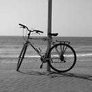 Lone Bike by Janie. D