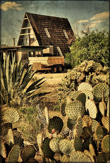 Desert Home by Barbara Manis