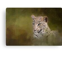 Leopard! Canvas Print