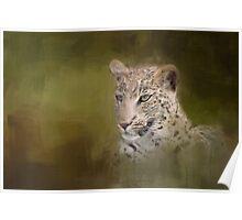 Leopard! Poster