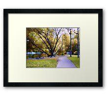 Sunday in the Park Framed Print