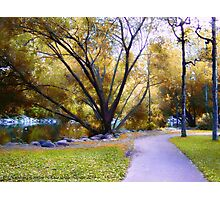 Sunday in the Park Photographic Print