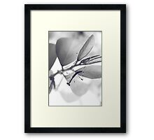 Hi, I Do Not Fall Framed Print