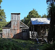 Waldheim Chalet - Cradle Mountain and Lake St Clair National Park, Tasmania by Ruth Durose