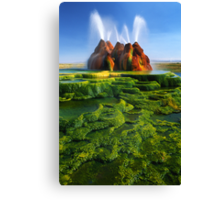 Green Fly Geyser Canvas Print