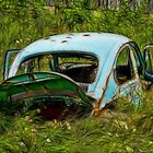 Abandoned Beetle by sundawg7