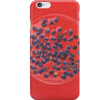 Mimicry II. - melon seeds and ladybird iPhone Case/Skin