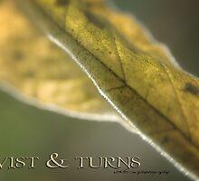 TWISTS & TURNS © Vicki Ferrari by Vicki Ferrari