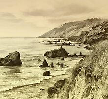 California Shoreline by pat gamwell