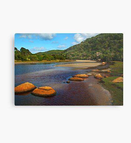 Tidal River,Wilsons Prom Metal Print
