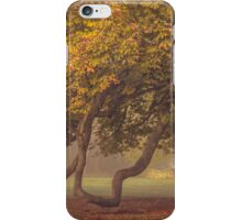 Autumn arrives iPhone Case/Skin