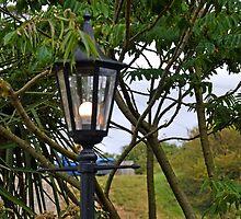 Lamp at Osmington Falls, Weymouth Dorset UK by lynn carter