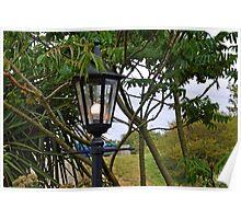 Lamp at Osmington Falls, Weymouth Dorset UK Poster