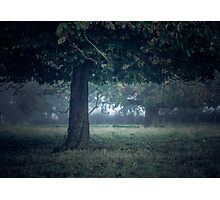 On a cool dark morning Photographic Print