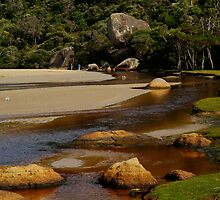 Wilsons Promontory by Joe Mortelliti