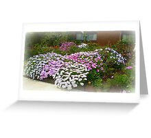 My Front Garden - Spring 2011 Greeting Card