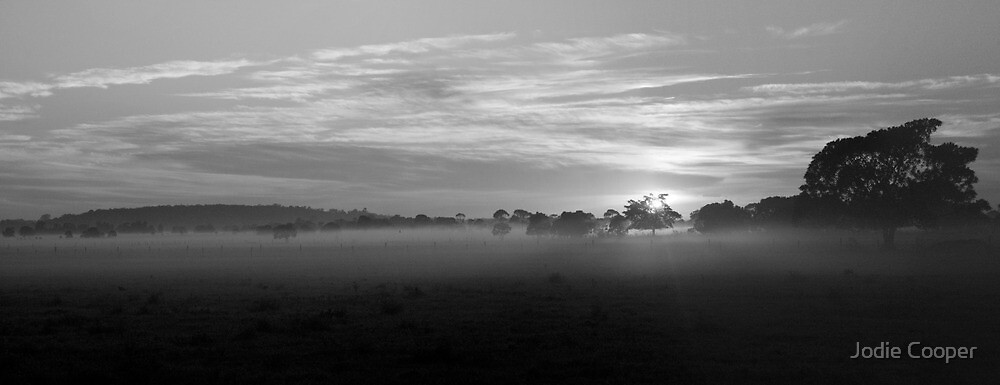 Oxley Sunrise by Jodie Cooper