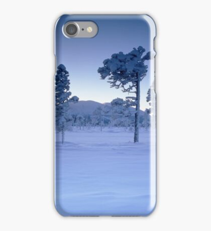 Snowy and frosty trees iPhone Case/Skin
