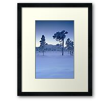 Snowy and frosty trees Framed Print
