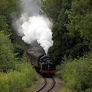 Clouds of steam by John Dalkin