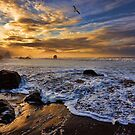 Sunrises of the Southern Oregon Coast by Randall Scholten
