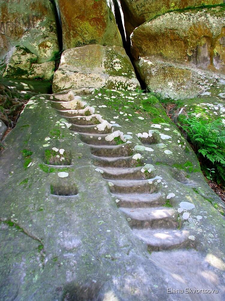 Stone steps by Elena Skvortsova