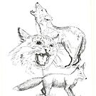 Fox Bobcat and Coyote - Pen & Ink by Gordon Pegler