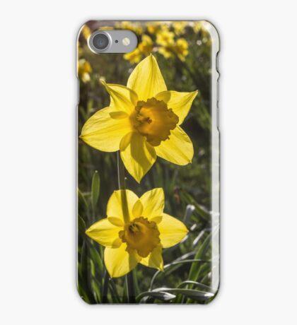 Daffodil Flowers iPhone Case/Skin